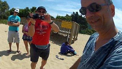 SCREAMER 6G kites video